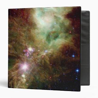 Newborn stars in the Christmas Tree cluster Binder
