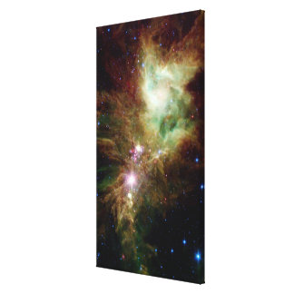 Newborn stars in the Christmas Tree cluster Canvas Print