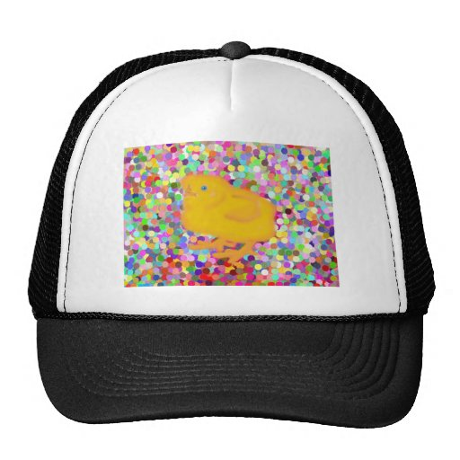 Newborn yellow chicken on colorful background hats