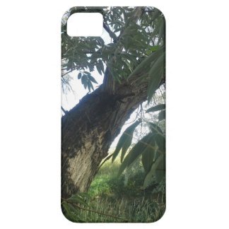 Newest category---Landscape Photography trees iPhone SE/5/5s Case