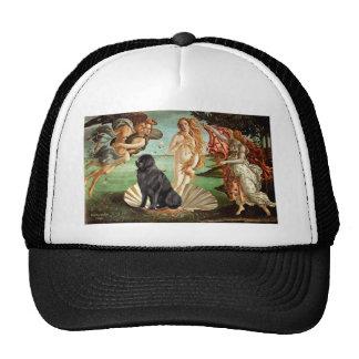 Newfie 1 - Birth of Venus Trucker Hat