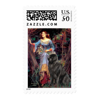 Newfie 1 - Ophelia in the Woods Postage