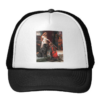 Newfie 1 - The Accolade Hats