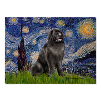 Newfie 2 - Starry Night Posters