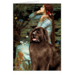 Newfie (brown) - Ophelia Seated Greeting Card