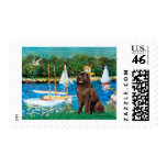 Newfie (brown) - Sailboats Postage Stamp