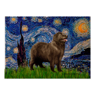 Newfie (brown) - Starry Night Poster