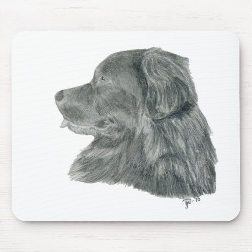 Newfie graphite drawing mouse pad