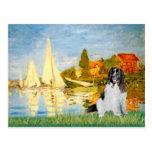 Newfie Landseer 3 - Sailboats 2 Postcard