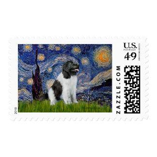 Newfie Landseer - noche estrellada Envio
