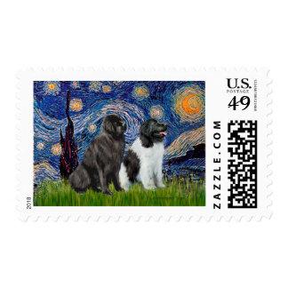 Newfie Pair (B1+L) - Starry Night Postage