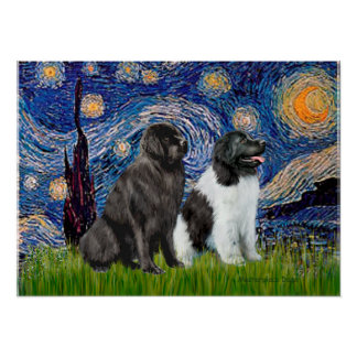 Newfie Pair (B1+L) - Starry Night Posters