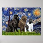 Newfie Trio - Starry Night Print