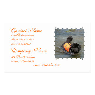 Newfie Water Rescue Business Card