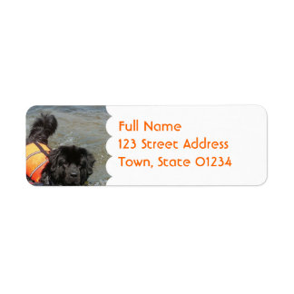 Newfie Water Rescue  Mailing Label