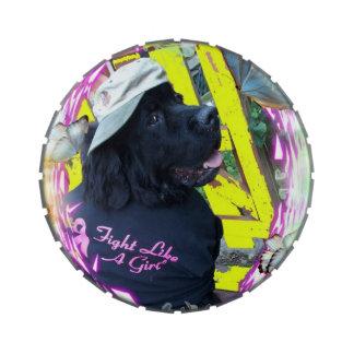 Newfounaland dog small tin jelly belly candy tins