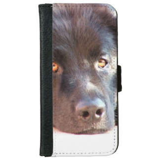newfoundland-3 iPhone 6 wallet case