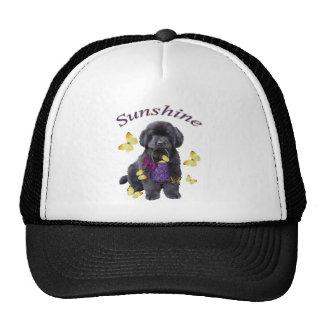 Newfoundland A Sunny Day Trucker Hat