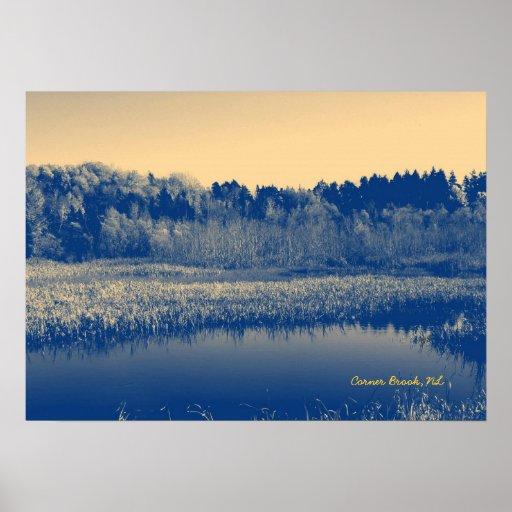 wallpaper canada trees newfoundland - photo #22