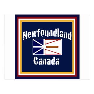 Newfoundland Canada Postcard