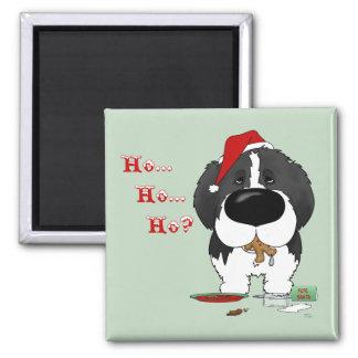 Newfoundland Christmas Magnets