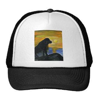 Newfoundland dog acrylic painting hats