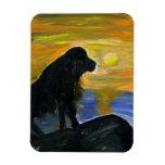Newfoundland dog acrylic painting magnet