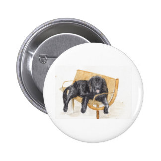 Newfoundland Dog Button