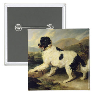 Newfoundland Dog Called Lion, 1824 (oil on canvas) Button