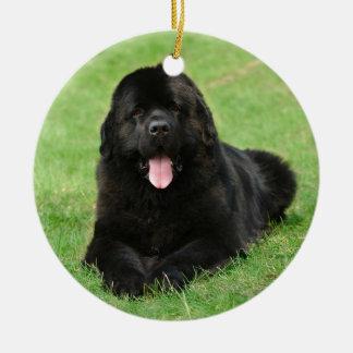 Newfoundland dog ceramic ornament