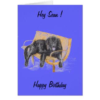 Newfoundland Dog, change the name, birthday card.