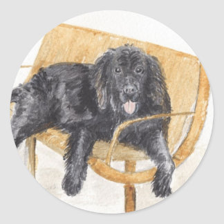 Newfoundland Dog Classic Round Sticker