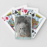 Newfoundland Dog deck of cards