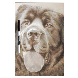 Newfoundland dog Dry-Erase board