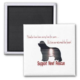 Newfoundland Dog Gifts Magnet