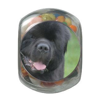 Newfoundland Dog Glass Candy Jar