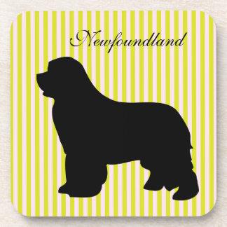 Newfoundland dog green & pink stripes coaster