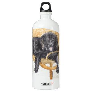 Newfoundland Dog on bench, Aluminum Water Bottle