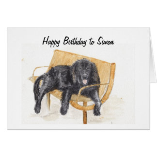 Newfoundland Dog on bench, Card