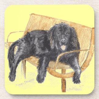 Newfoundland Dog on bench, Coaster