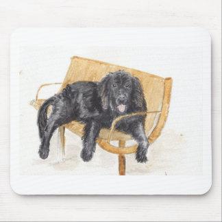 Newfoundland Dog on bench, Mouse Pad