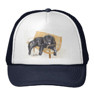 Newfoundland Dog on bench, Trucker Hat