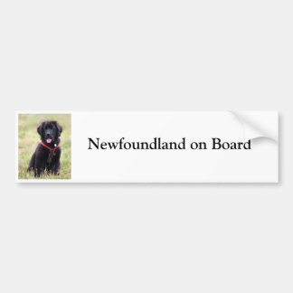 Newfoundland dog on board custom bumper sticker