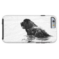 Case-Mate Barely There iPhone 6 Case with Newfoundland Phone Cases design