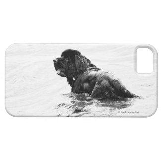 Newfoundland Dog Phone Case iPhone 5 Cover
