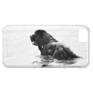 Newfoundland Dog Phone Case iPhone 5C Cases