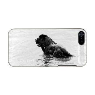 Newfoundland Dog Phone Case Incipio Feather® Shine iPhone 5 Case