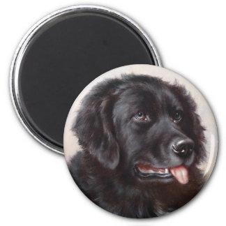 Newfoundland Dog Portrait 2 Inch Round Magnet