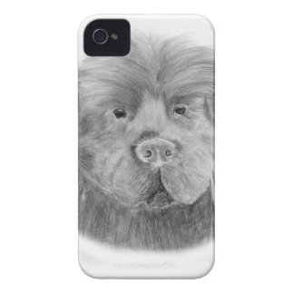 Newfoundland dog portrait iPhone 4 case