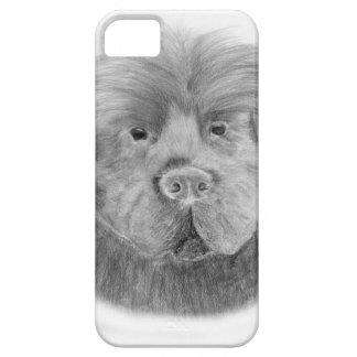 Newfoundland dog portrait iPhone SE/5/5s case